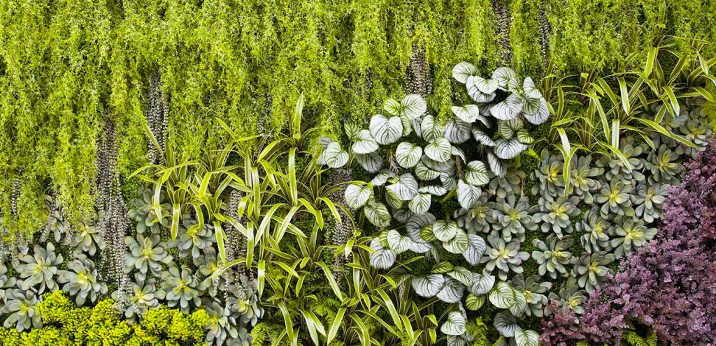 6 reasons to choose an artificial vertical garden