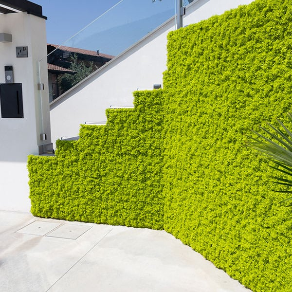 giardini verticali artificiali