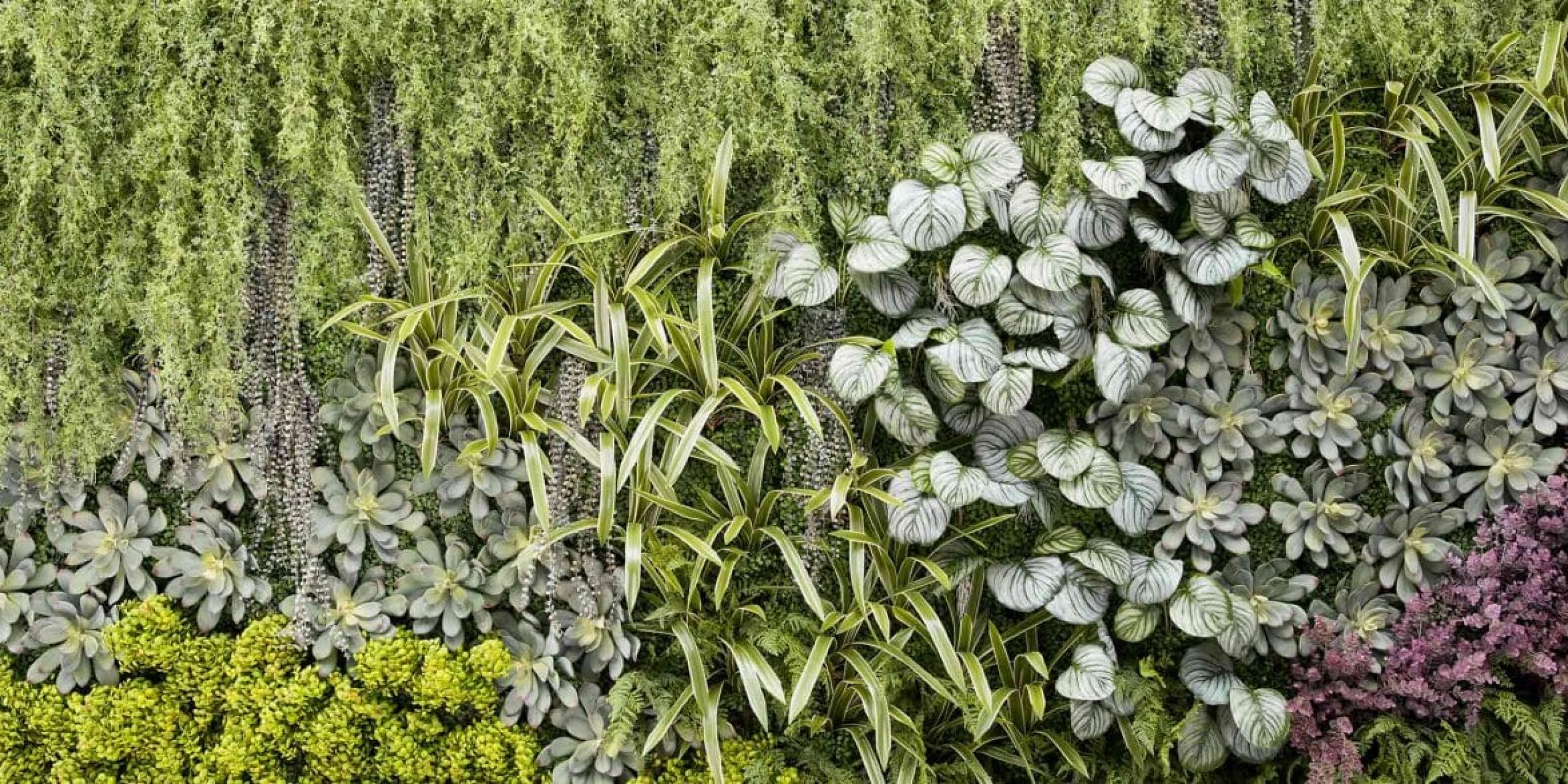 giardino-verticale-artificiale